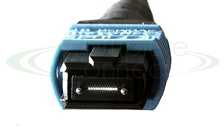 Male 12 fibre connector