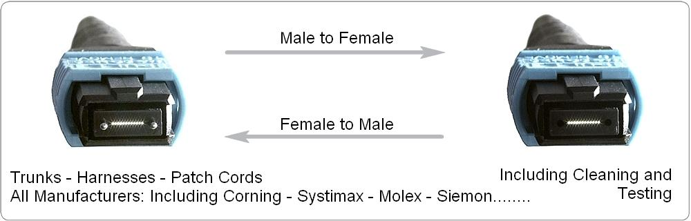 mtp gender change female to male to female