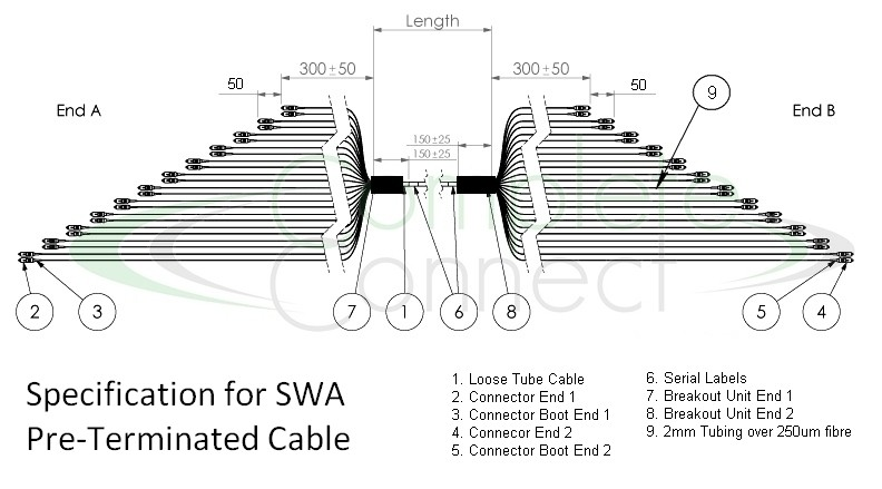 Ptx Series Pre Terminated Om4 Steel Wire Armoured Cables